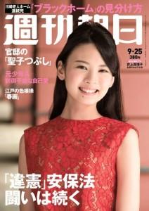 asahi_model